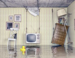 water damage cleanup columbia, water removal columbia