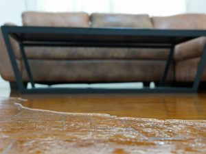 columbia water damage cleanup, columbia water damage repair, columbia water damage restoration